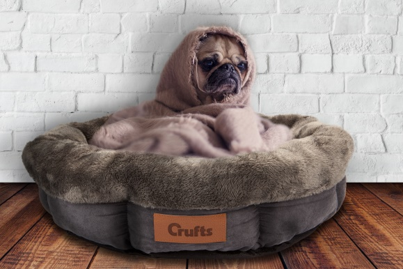 Crufts Toy Bed